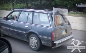 Dog Car Gate – White Trash Repairs