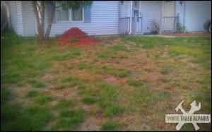 A truely White Trash Lawn – White Trash Repairs