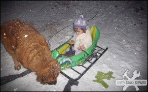 White Trash Dog Sled