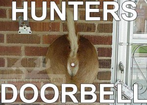 hunter-doorbell