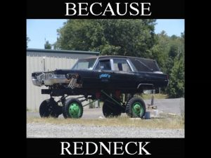 Beacuse-Redneck-Movie_thumb65